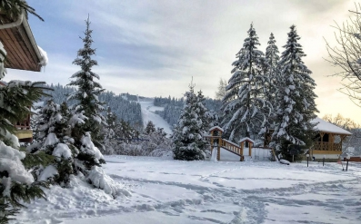 """Winter in the """"Perlyna Karpat"""""""